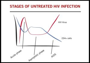 Diagram of stages of HIV infection