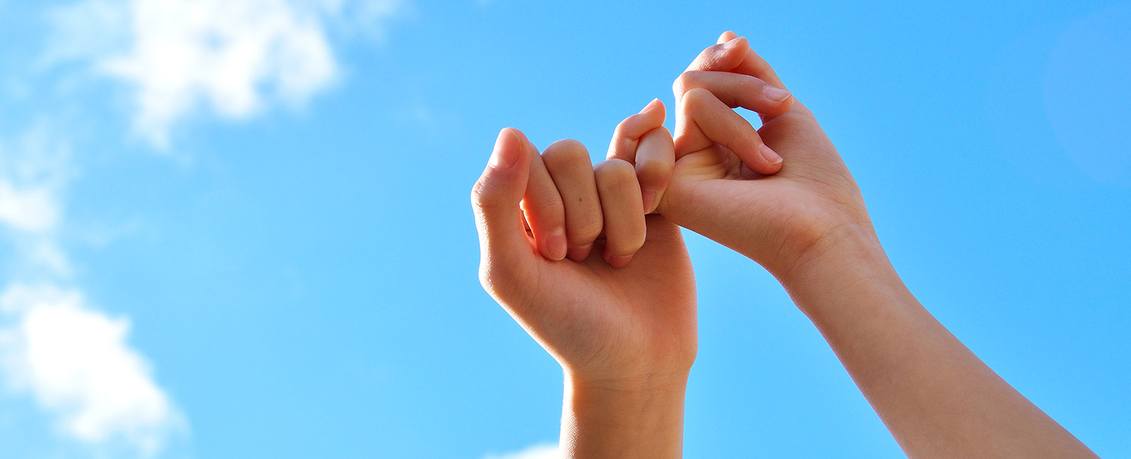 pledge promise hands